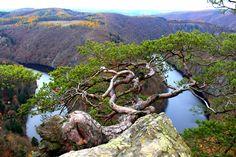 Smetanova Vyhlídka, ČR River, Outdoor, Outdoors, Rivers, Outdoor Games, Outdoor Living, Garden