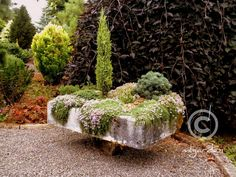Image result for original english stone water troughs