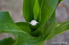 Cassidy MR. Photography | Eastern Shore Maryland Wedding Photographer | Ring Shots cassidymr.com