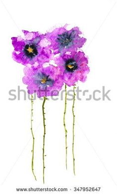 Violet poppies , watercolor painting