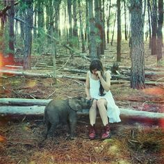 I want an elephant when im sad. But someone else clean up after it....Cinematic Photos of a Sensational Imaginary World