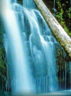 Upper Trestle Creek Falls - Google Search