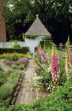 I just love the foxgloves and other flowers the way they're set up here  12 Herbs for the Colonial Garden
