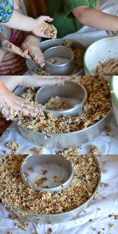 bird food DIY Articles is part of How To Make Homemade Bird Food Steps With Pictures - bird seed wreaths! Looks so fun! Homemade Bird Feeders, Diy Bird Feeder, Homemade Gifts, Diy Gifts, Activities For Kids, Crafts For Kids, Outdoor Activities, Bird Seed Ornaments, Bird Seed Crafts