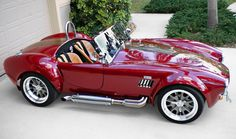 www.cobracountry.com cobra4salefolder cobra-brunsman-fl2-BIG.jpg