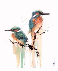 The Watercolour Log Rachel walker Love this. - The Watercolour Log Rachel walker Love this. Watercolor Sketch, Watercolor Animals, Watercolor And Ink, Watercolor Paintings, Bird Illustration, Watercolor Illustration, Animal Paintings, Animal Drawings, Bird Sketch