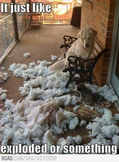 It just exploded...