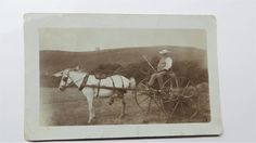 Early Real Photo Postcard old man on a Horse and Cart. Some of my ancestors were surnamed Kerslake & I am interested in the history of the surname - if you're researching this surname, please get in touch at liz <at> lizweb.net