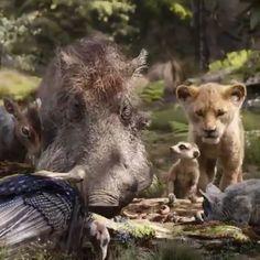 The Lion King - Simba idolizes his father, King Mufasa, and takes to heart his own royal destiny. Lion King Video, Lion King 3, Lion King Movie, Disney Lion King, Timon And Pumbaa, Simba And Nala, Le Roi Lion Film, Images Roi Lion, Watch The Lion King