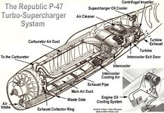 Republic Thunderbolt The largest single-engine fighter aircraft of due to the use of a massive turbo-supercharger system. Aviation Mechanic, Aviation Art, Aircraft Engine, Fighter Aircraft, Ww2 Aircraft, Luftwaffe, P 47 Thunderbolt, Airplane Art, History Online