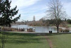 Commonwealth Lake Park Cedar shills Beaverton.  20 acres. Stocked trout