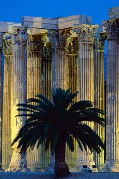 """Temple of Olympian Zeus, Greece  The tree is a nice tree, but please MOVE IT OUT OF THE *#% WAY!!   .""""Thank you,"""" she smiled sweetly.  Grrr."""