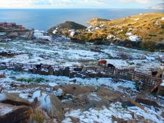 Slight and rare snow on New Year's Day, Ios island Ios Photos, Greek Islands, Organizing, Greece, Snow, Decorating, Mountains, Day, Winter