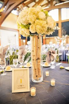 Birch, Hydrangea and Rose Centerpieces | Elevate Photography https://www.theknot.com/marketplace/elevate-photography-englewood-co-219604 | Donovan Pavilion https://www.theknot.com/marketplace/donovan-pavilion-vail-co-633484 | Plum Sage Flower https://www.theknot.com/marketplace/plum-sage-flowers-denver-co-337075