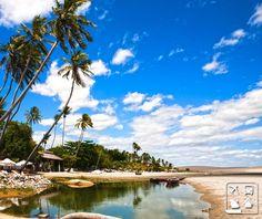 Também conhecida como Jerí, a praia de Jericoacoara no Ceará já foi eleita a praia mais bonita do Brasil e uma das 10 mais belas do mundo pelo The Washington Post. A praia possui um clima estável de 27º a 30 ºC durante todo o ano, mais um motivo para você vir visita-la a qualquer momento! #CurtaoBrasil http://www.clubeturismo.com.br/site/