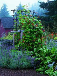 Arbor. Nancy Heckler's Hood Canal Garden (from Zahid Sardar, Marion Brenner's New Garden Design: Inspiring Private Paradises. Gibbs Smith copyright