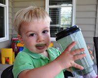 St. Patrick's Day Fun!  Greenberry Shakeology    I was having Greenberry Shakeology! He may have stole a sip...