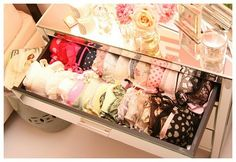 Frou Frou Fashionistas Boudoir: my dream home will need dreamy storage for my dreamy lingerie Lingerie Storage, Lingerie Organization, Bra Storage, Lingerie Drawer, Closet Organization, Clothes Storage, Underwear Storage, Organization Ideas, Ideas Para Organizar Ropa