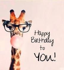 Image result for happy birthday giraffe