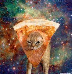 space cat | Tumblr