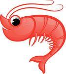 Shrimp Mascot -