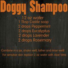 Young Living Essential Oils Dog Shampoo chemical free