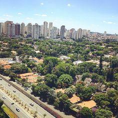 E #SãoPaulo comemora mais um aniversário em um dia tão lindo!...