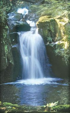 Oregon Hikes - Sweet Creek Falls Mapleton, OR Hwy 126 Siuslaw River River Bridge 15 mi E. of Florence