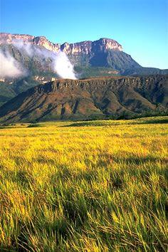 Views from Venezuela - Canaima National Park