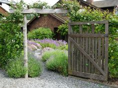 Herb Garden   Lopez Island Kitchen Gardens