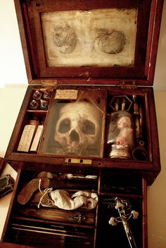 Vampyr Anatomical Research Case from Merrylin Cryptid Museum