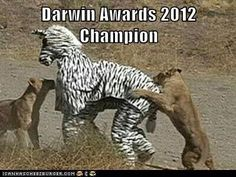 Darwin Awards 2012 Champion