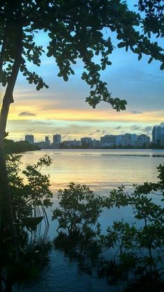 Beautiful view......Laguna del Condado, Puerto Rico ... photo by Magali Martinez www.combatebeach.com