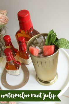 Watermelon Mint Julep Recipe - Everyday Party Magazine