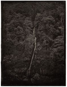 SIMPLE SONG PROJECT, photographer Luo Dan (b1968, Chongqing City, China; based in Chengdu, Sichuan Province, China) employed the traditional collodion wet plate photographic process invented in 1850.