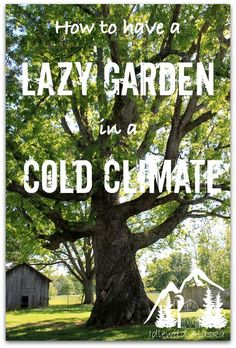 How to Have a Lazy Garden in a Cold Climate - IdlewildAlaska