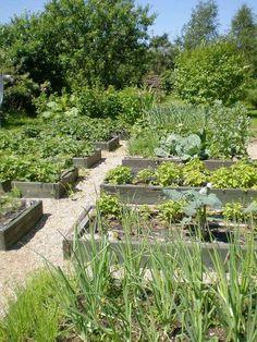 Historic landscape design, Wilmette Illinois traditional landscape - All For Garden Backyard Vegetable Gardens, Potager Garden, Vegetable Garden Design, Herb Garden, Garden Landscaping, Outdoor Gardens, Vegetables Garden, Vege Garden Ideas, Veggies