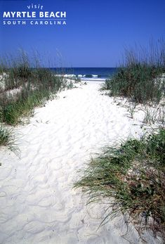 Did you already get started on your 2015 vacation planning? Consider Myrtle Beach, SC - with its beautiful pristine beaches and tons of amusements and attractions, it is fun for all ages! http://www.visitmyrtlebeach.com/?cid=soc_post_pin_promo_hp_121714