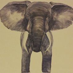 Elephant painting by Amanda Skye . Commissions and prints available