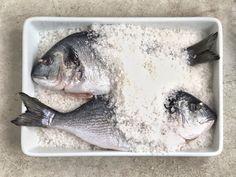 dorado fish recipes;parmesan fish recipes;ono fish recipes;tapila fish recipes;walleye fish recipes;taplia fish recipes;gefilte fish recipe;turbot fish recipe;bronzini fish recipe;sheephead fish recipe;sheepshead fish recipe;fish fillets recipes;fish talapia recipes;fish tacos recipe;recipes fish;airfryer recipes fish;whole30 recipes fish;snook recipes fish;fluke recipes fish;ono recipes fish Gefilte Fish Recipe, Snickerdoodle Muffins Recipe, Ono Fish Recipe, Parmesan Fish Recipe, Fluke Recipe, Dorado Fish, Walleye Fish Recipes, Fish Tacos, El Dorado