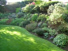 Sloping garden bed, level lawn area