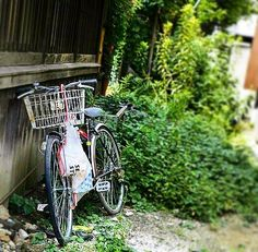 #bicycle #bike #scrap #green #street #streetphotography #snap #snapshot #streetsnap #alley #backstreet #backalley #自転車 #路地 #スナップ #路地裏 #35mmf2 #photographer #photographers #osaka #japan
