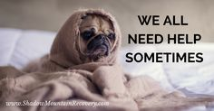 Even this lil guy needs #help sometimes. Find out how Shadow Mountain Recovery can help you overcome addiction and stay sober. ○○○ #pug  #ShadowMountainRecovery #Addiction #Recovery #Rehab #Detox #Aspen #Cascade #ColoradoSprings #Denver #Colorado #Albuquerque #Taos #NewMexico #StGeorge #Utah #RecoveryIsPossible #RecoveryIsWorthIt #WeDoRecover #12Steps #AddictionRecovery #Rehabilitation #Sober #Sobriety #dog #Cute #puppy