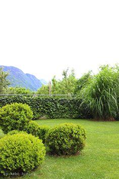 bambuspflanzen im kiesbeet neben holzterrasse holzterrasse pinterest bambuspflanzen. Black Bedroom Furniture Sets. Home Design Ideas