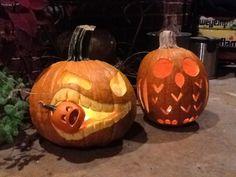 Owl pumpkin Halloween Gourds, Fall Halloween, Halloween Party, Owl Pumpkin, Fall Decorations, Holiday Decorating, Trick Or Treat, Pumpkin Carving, Holiday Ideas