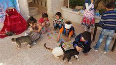 #HouseofCats #Syrianchildren #SyrianCats #love #beauty #cuteness #cats Syrian Children, Childhood, Cats, Beauty, Infancy, Gatos, Cat, Kitty, Beauty Illustration