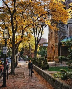 A hint of Indian summer in the air this morning Back Bay Street, Boston, Massachusetts . Autumn Scenes, Indian Summer, Natural, Good Morning, Sidewalk, Landscape, Street, City, Fall