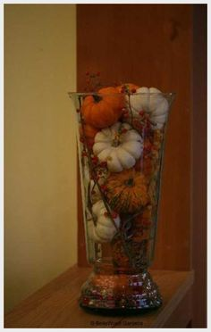 Create quick, inexpensive centerpieces for a fall wedding by filling a tall vase with pumpkins. Inexpensive Centerpieces, Fall Wedding Centerpieces, Pumpkin Centerpieces, Wedding Decorations, Centerpiece Ideas, Fall Decorations, Halloween Centerpieces, Pumpkin Vase, Centerpiece Flowers