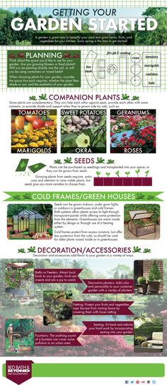 Infographic: How to Get Your Garden Started