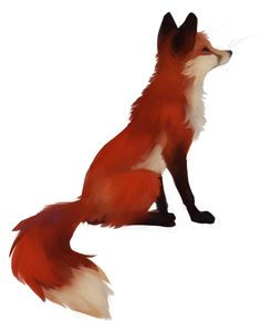 Red Fox #foxes #fox #cute #animals #cubs #cutie #wow #lol #gift #gifts #shirt #foxy #furry #animal #fuchs #füchse #raposo #renard